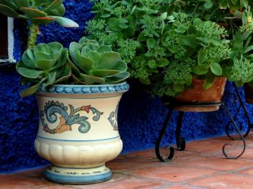 Cup and Jar flowerpots